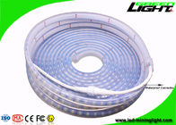Professional Safety Outdoor Led Strip Lights With 60Leds/M , Fire Resistant