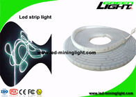 High Brightness 22 Lum Led Tape Strip Lights  24 Volt 5m/Reel Cool White