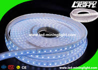 Waterproof SMD 5050 LED Flexible Strip Lights 5m Led Tape Light  For Underground Mining Tunnelling