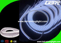 High Brightness Cool White Industrial Underground Led Strip Lights 24 Volt 300 Leds 1 Year Warranty