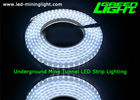 140 LEDs 24V Colour Changing Led Strip Lights SMD2835 17W Silicon Gal IP68