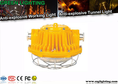 24W WF2 Anti Corrosion Tunnel Led Lighting For Industrial / Underground
