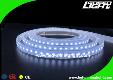 China Explosion - Proof Safety Led Flexible Ribbon Strip Lights with 5m 300 Leds 24V IP68 factory