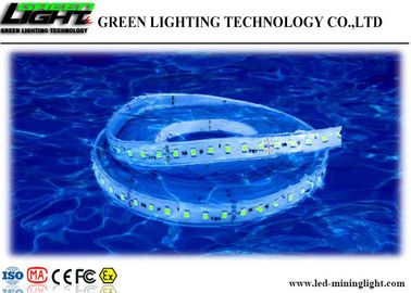 China Low Voltage 24V Led Flexible Cable Strip Lighting Silica Gel 5m/ Reel Energy Saving factory