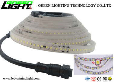 China DC 24V LED Flexible Strip Lights White Silicon Maintenance Impact Resistant factory